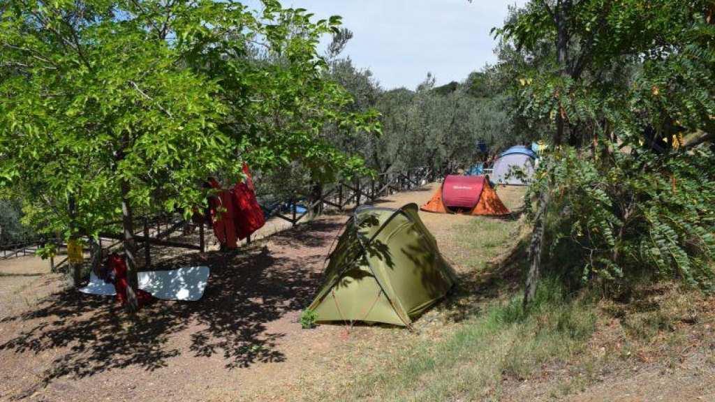 tentplaatsen kleine camping Blucamp